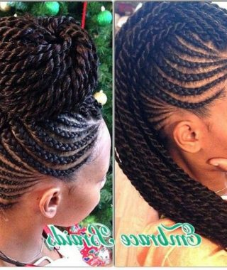 Braids And Twists Fauxhawk Hairstyles