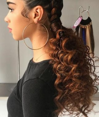 Curly Half-Updo With Ponytail Braids